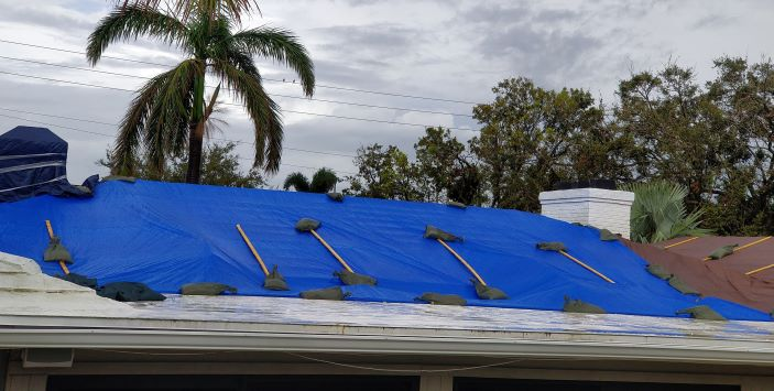 Tropical Storm Damage causes Roof Leaks which leads to Water Damage and Black Mold