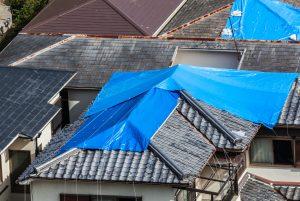 Roof claim